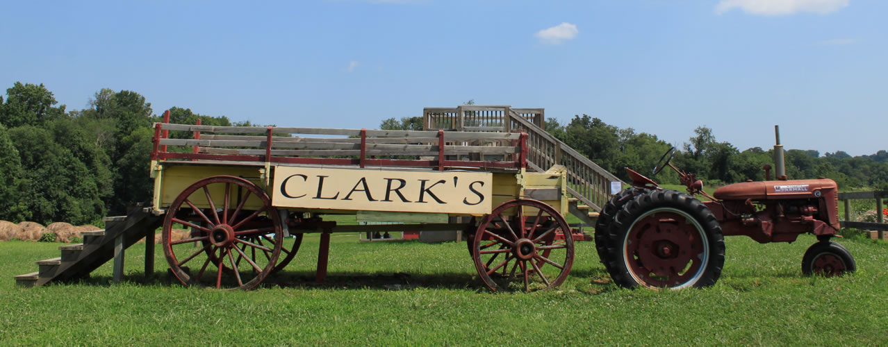 Clark tractor and wagon