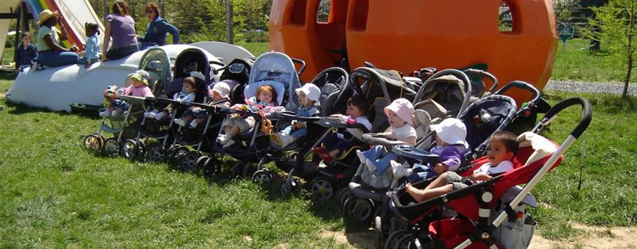 Visiting strollers at the farm