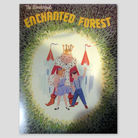 The Wonderful Enchanted Forest Story Book