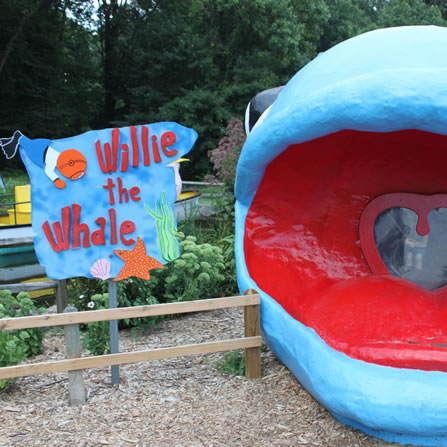 Willie The Whale at Clarks Farm